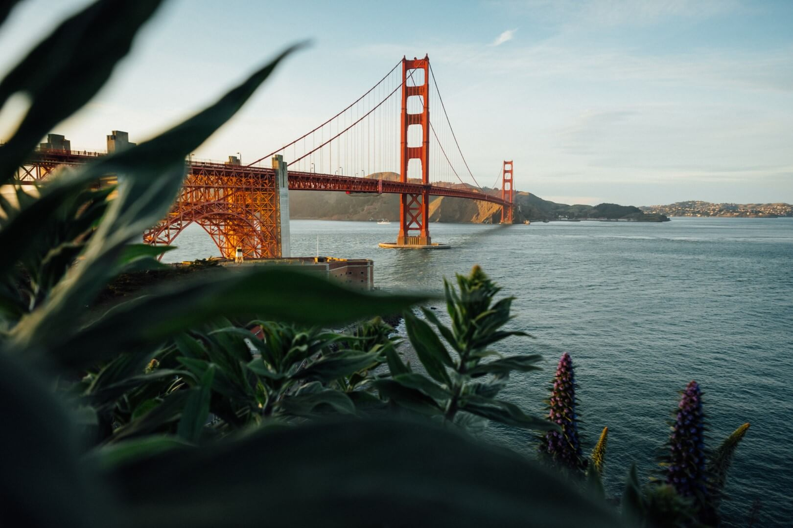 sustainable clothing brands from san francisco