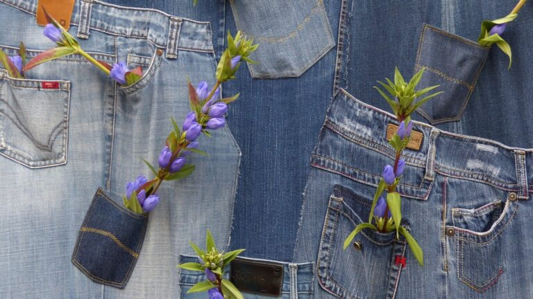 sustainable denim brands