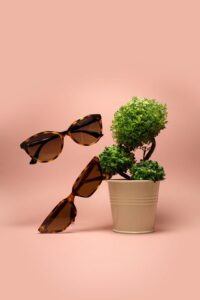 Sustainable Sunglasses Brands